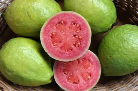 download guava